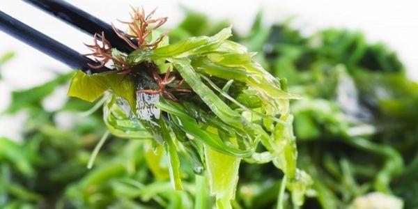 Морська капуста для схуднення: користь, рецепти, відгуки