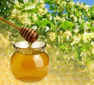 Мед липовий: корисні властивості і протипоказання