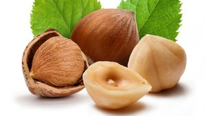 Корисні властивості горіхів фундук, листя, шкаралупи, протипоказання