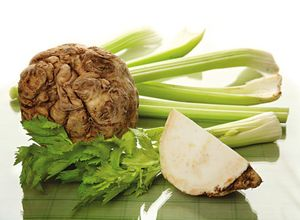 Селера корисні властивості і протипоказання гламурного овочу