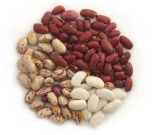 Корисні властивості квасолі: стручкової, червоної, білої, чорної