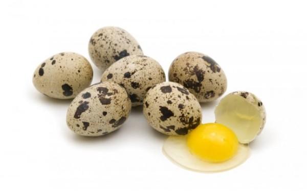 Перепелині яйця: корисні властивості для чоловіків і жінок