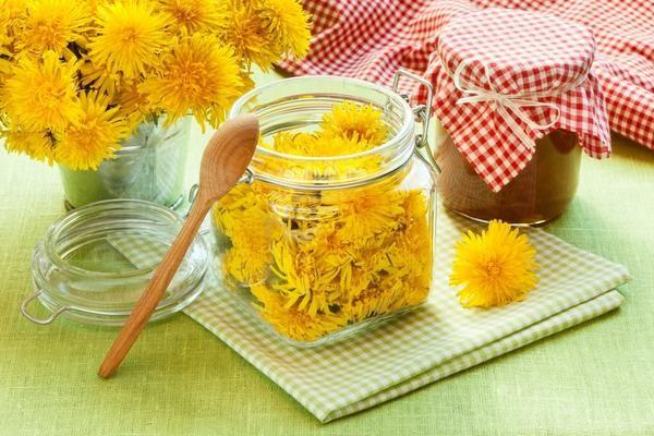 Мед з кульбаби: рецепти, поради, користь і шкода