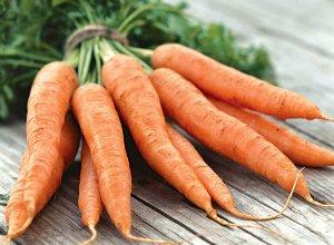 Корисні властивості моркви і протипоказання до употребелению