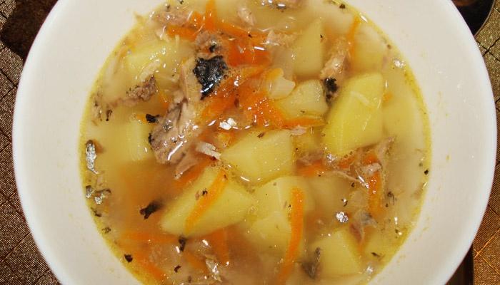 Суп з консервованого тунця: рецепти з фото покроково