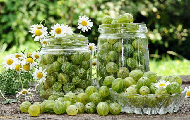 Варення з агрусу (просте, «Царський»): рецепти покроково