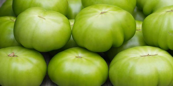 Засолювання зелених помідорів: на зиму в банках, холодним способом
